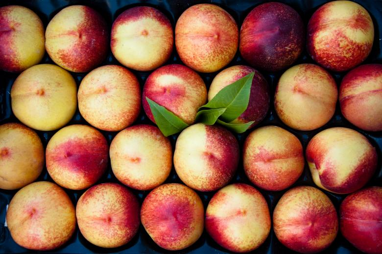 Free Stock Photo of Peaches Created by Merelize