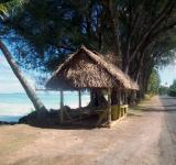 Free Photo - Rarotonga Beach Hut