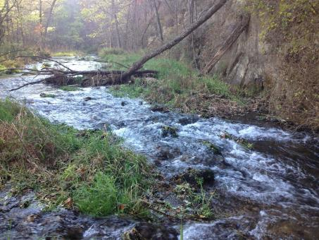 Babbling Brook rapids - Free Stock Photo