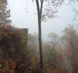 Free Photo - Fog View from Bluff