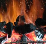 Free Photo - Fire to barbecue