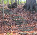 Free Photo - Steps on the hiking path