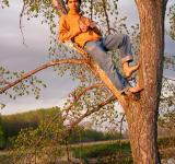 Free Photo - Young man relaxed on tree