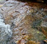 Free Photo - Rocky Stream Background