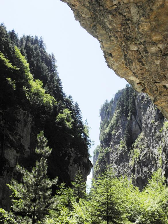 Free Stock Photo of Trigrad gorge in Rhodopi mountains Created by Yuliy Ganev