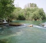 Free Photo - River Manavgat near Antalya