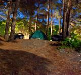 Free Photo - camping site at night