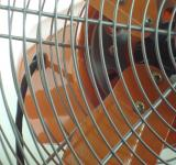 Free Photo - Orange Fan