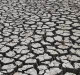 Free Photo - Drought