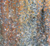 Free Photo - Speckled Grunge Background