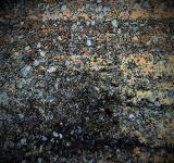 Free Photo - Dark Speckled Grungy Background