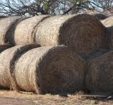 Free Photo - Hay Bales