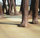 Free Photo - Agora (feet)