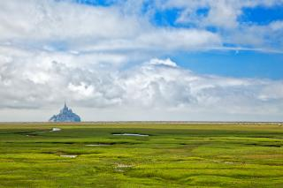 Download Normandy Pasture - HDR Free Photo