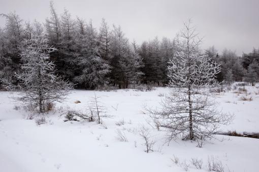 Free Ice and snow Stock Photos - Stockvault net