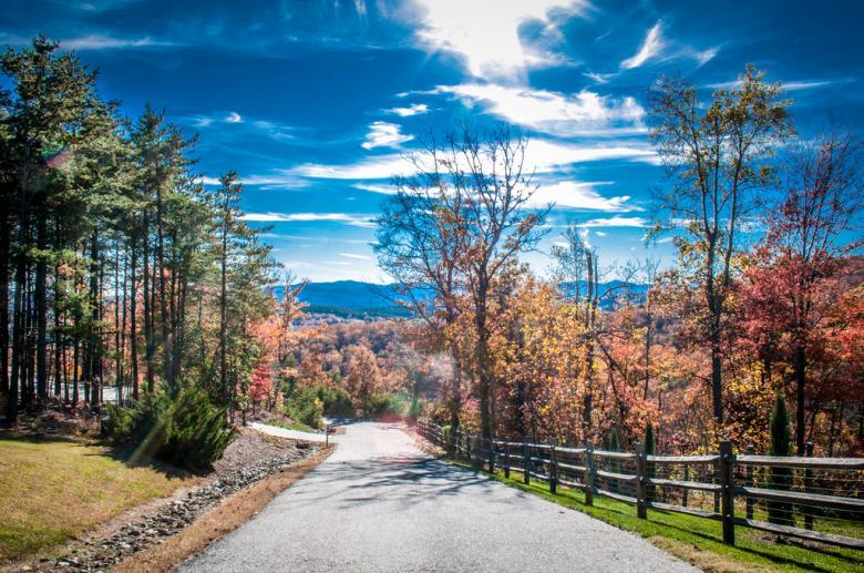 Fall season - Free Forest Stock Photos