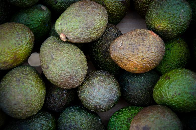 Free Stock Photo of Avocado Created by Merelize