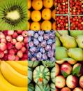 Free Photo - Fruit collage