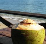 Free Photo - Fresh Coconut Drink by the Ocean