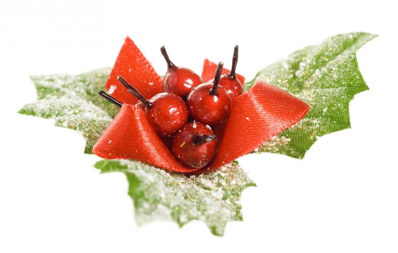 Free Stock Photo of decoration european holly  Created by 2happy