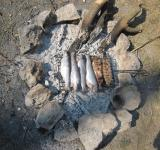 Free Photo - Trout fish on the fire