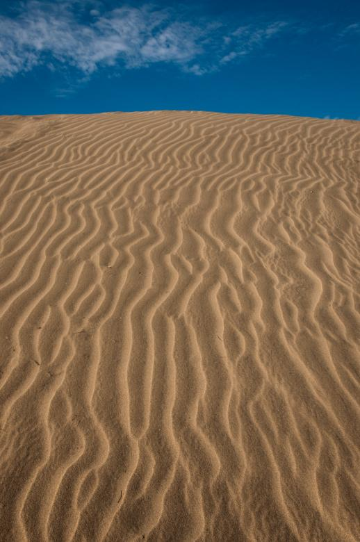 Free Stock Photo of Desert sand ripples Created by Merelize