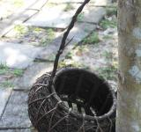 Free Photo - Basket