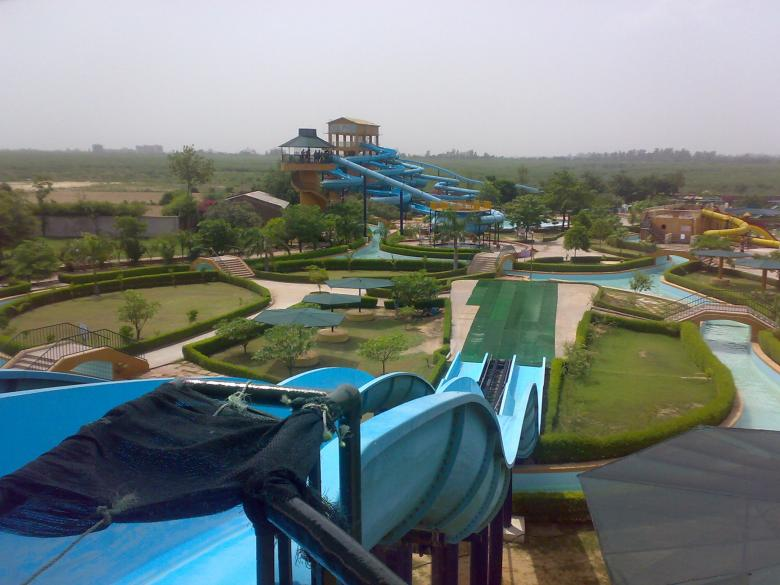 Free Stock Photo of Dolphin water park Created by shiv Kumar