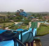 Free Photo - Dolphin water park