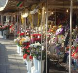 Free Photo - Flower market