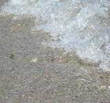 Free Photo - Little sea wave