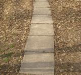 Free Photo - Path in the park