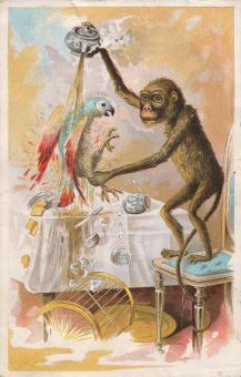 Victorian Trade Card - Monkey Business - Free Stock Photo