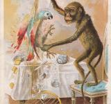 Free Photo - Victorian Trade Card - Monkey Business
