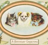Free Photo - Birthday Greeting Card - Circa 1910s