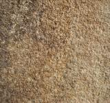 Free Photo - Brown concrete wall texture
