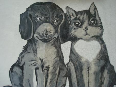 Cat and dog painting - Free Stock Photo