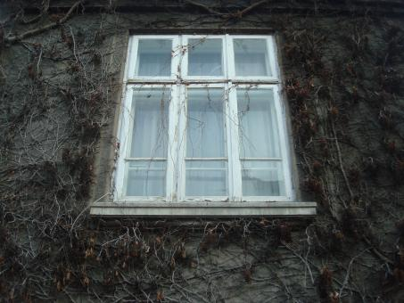 Window on an old building - Free Stock Photo