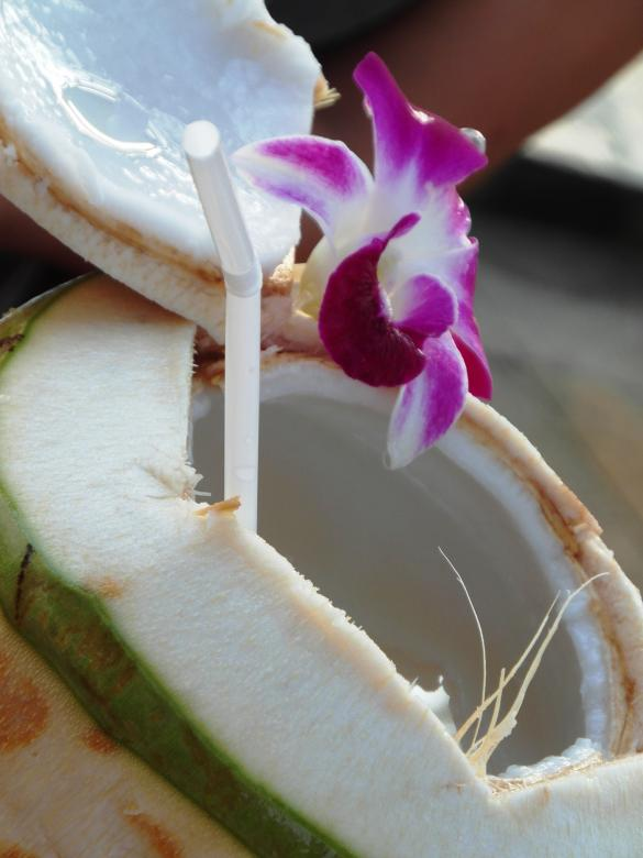 Free Stock Photo of Fresh Coconut Drink on the Beach Created by Ian L
