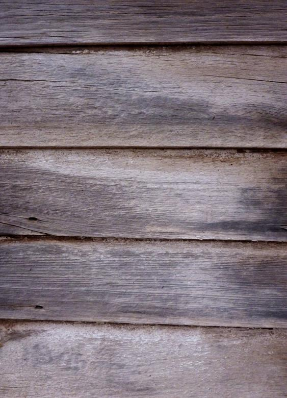 Free Stock Photo of Old Wood Texture Created by Free Texture Friday