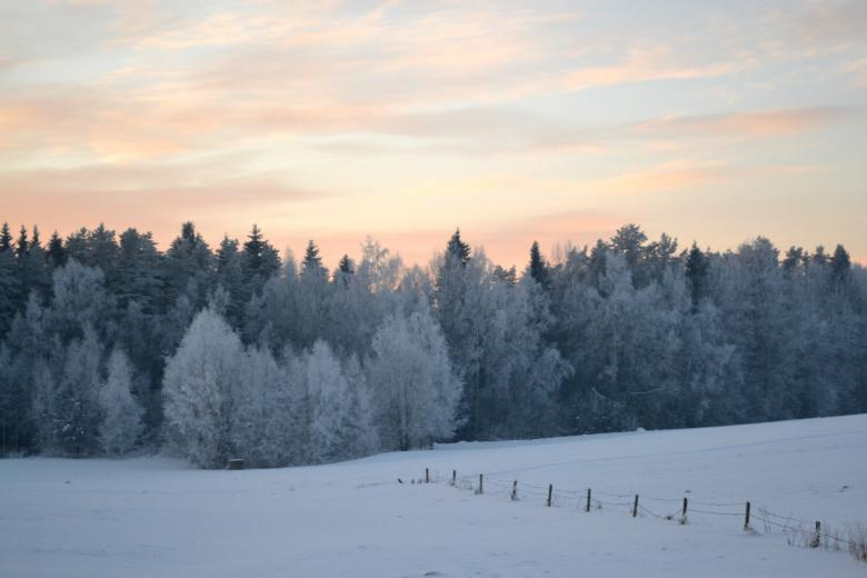 Free Stock Photo of Winter evening in countryside Created by Janis Urtans