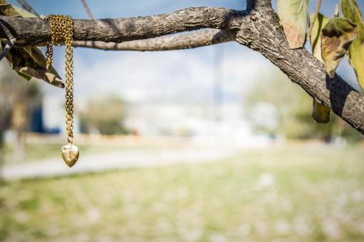 Necklace - Free Stock Photo
