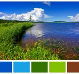 Free Photo - Beaver Brook Color Palette Sampler
