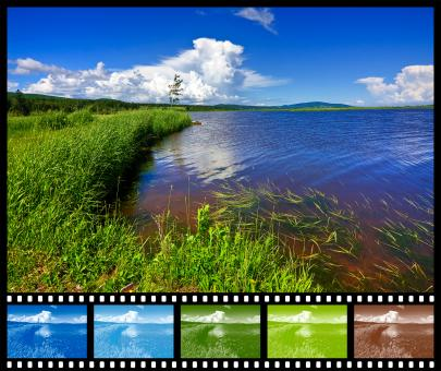 Beaver Brook Color Film Sampler - Free Stock Photo
