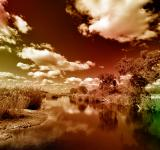 Free Photo - Kruger Park Landscape - PhantasmaChrome