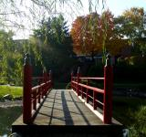 Free Photo - Garden Bridge