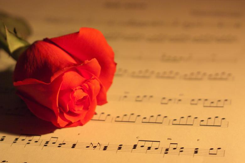 Rose and Music - Free Floral Backgrounds