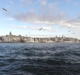 Free Photo - Golden Horn and Galata Tower in Istanbul