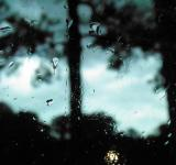 Free Photo - when it rains