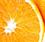 Free Photo - Juicy fresh orange